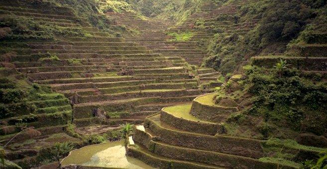 フィリピン・コルディリェーラの フィリピン・コルディリェーラの棚田群 i...  フィリピン・コ