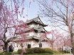 Castillo Hirosaki