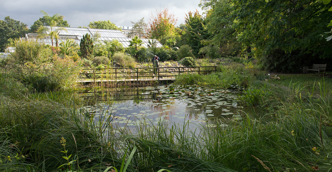 Leipzig Botanical Garden in Leipzig
