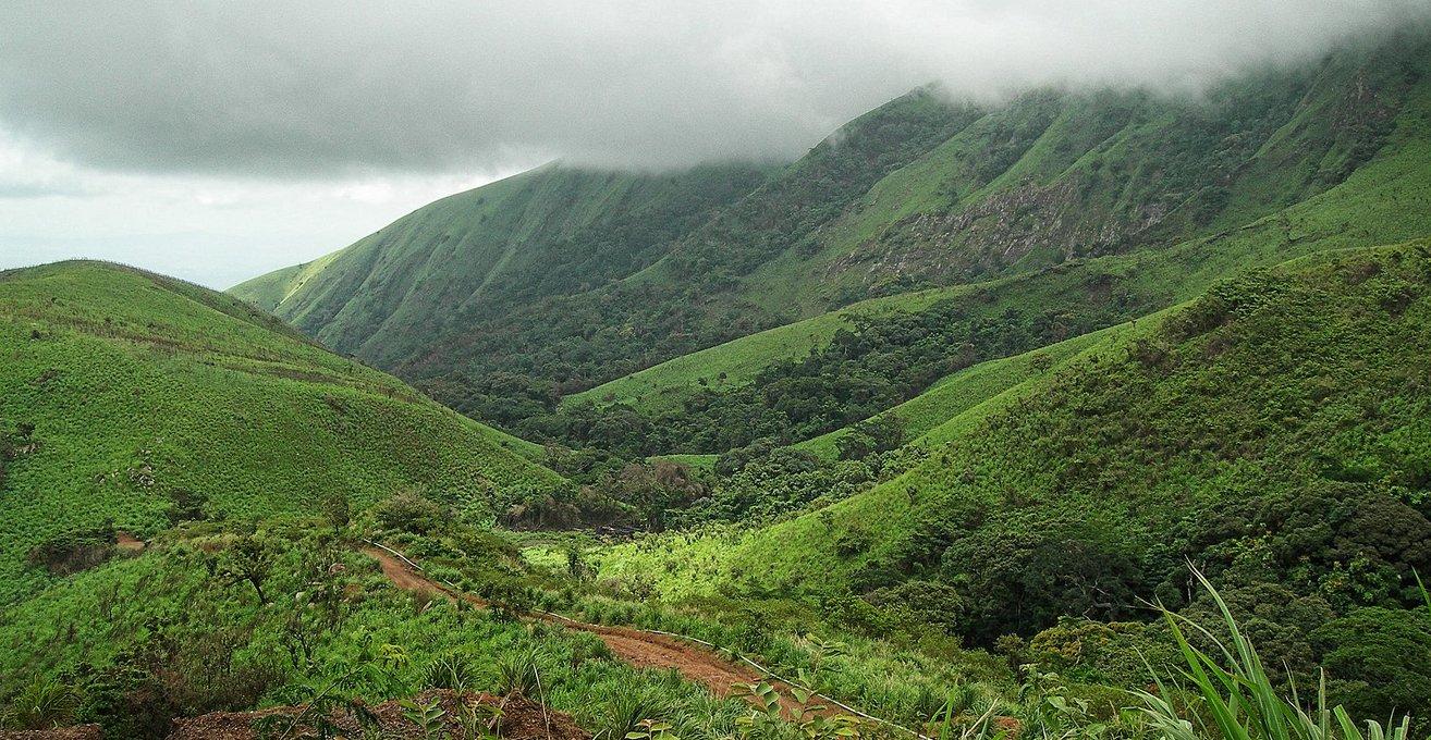 محمية جبل نيمبا الرائعة