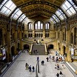 Музей естествознания (Лондон)