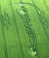 Crop Circle_2009.6.27_South Field, Nr Alton Priors, Wiltshire, UK
