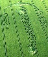 Crop Circle_2009.6.27_South Field, Nr Alton Priors, Wiltshire, UK