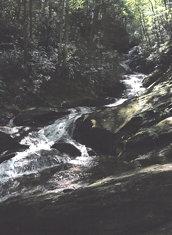 Roaring Creek Falls