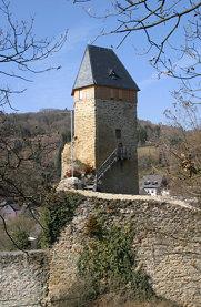 Burg Frauenstein (Wiesbaden)