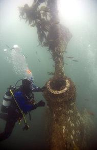 Rondo (ship wreck)