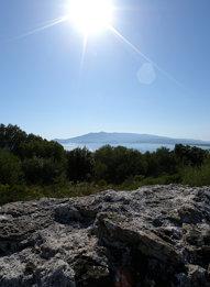 rocia foresta mare monti sole