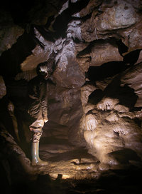 Pridhamsleigh Cavern