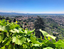 Finalmente sole, anche se per poco ????#Bergamo #bg #italy #relax #sun #skyline @cittaalta_bergamo #