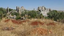 Bara, Syria