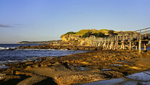 Bare Island (New South Wales)