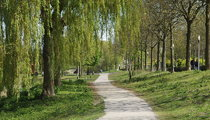 Westerpark (park)