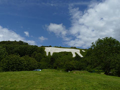 white horse t (24)