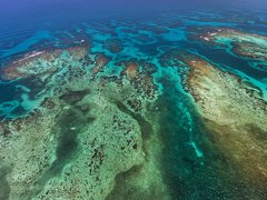 Belize is home to the second largest barrier reef  ...