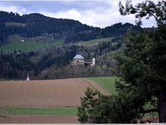 Burg Haimburg DSC_0321