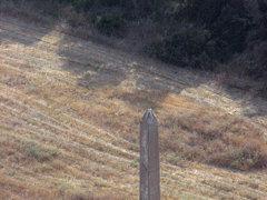 Cesarea - Hypodrome obelisk