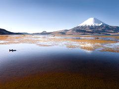 Lago Chungara Chile