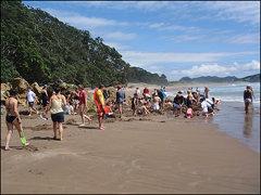 Hot Water Beach !