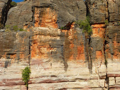 Geikie Gorge - Adventure Wild Kimberleys Tour - Outback Western Australia