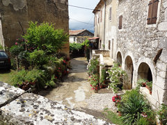2014 Croatia Istria Krsan  (3)