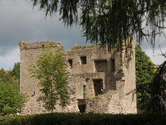 Quoile Castle