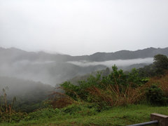 Nebel in Kelantan