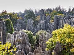 views of stone forest, Shilin, Yunnan, CN, 2011-11-14 (164 of 156).jpg