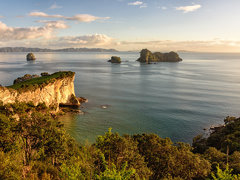 Motueka Island