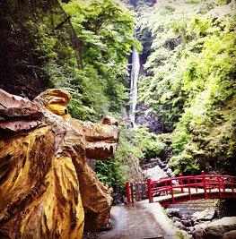 「日本の滝百選」にも選ばれた、酒水の滝。今日は何故か観光客がほとんどおらず、この風景を独占しながらのビールは格別でした。