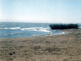 Khankasøen