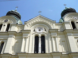 Собор Святого Димитрия (Видин)
