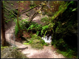 Akvofaloj de Dierový potok