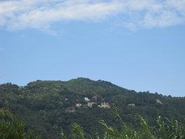 Monti Albani