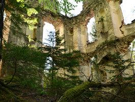 Burgruine Waxenegg