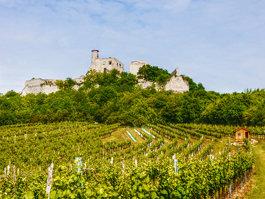 Castle Falkenstein (Lower Austria)