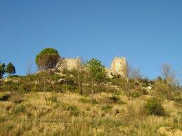 Castle of Alcanede