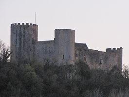 Château des Rois ducs
