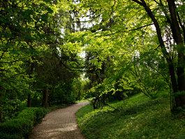 Cluj-Napoca Botanical Garden