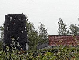 Cockfield Windmill
