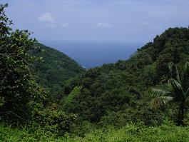 Κόκος Νήσος