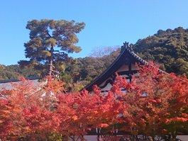 Eikan-dō Zenrin-ji