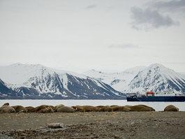 Parc national de Forlandet