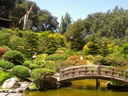 Jardines Hakone