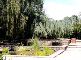 Jardin botanique de l'Evêché