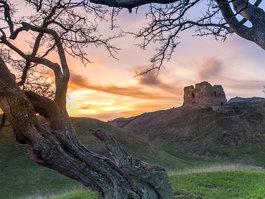 Kalø slot