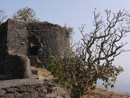 Karnala fort
