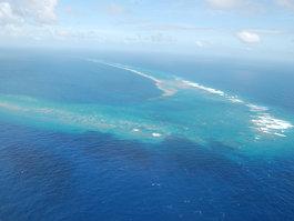 Kingman Reef