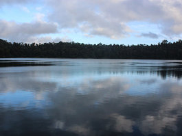Lake Eacham (Queensland)