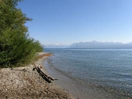 אגם ז'נבה