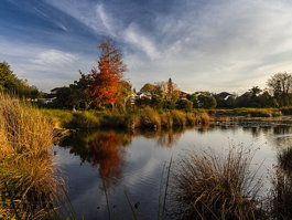 Lake Rotoroa (Waikato)